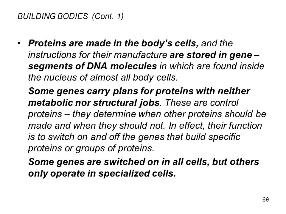 69 BUILDING BODIES (Cont.-1) Proteins are made in the body's cells, and the instructions for their manufacture are stored in gene – segments of DNA mo