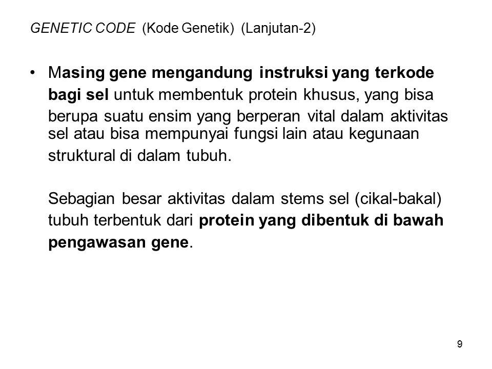 10 Genetika (Lanjutan-1) Sistem adalah sangat komplek, aparatus pemecah sandi tidak dapat membaca langsung dari DNA, harus dibantu RNA.