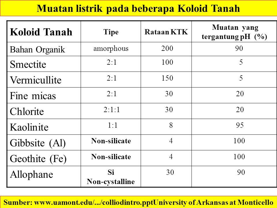 Koloid Tanah TipeRataan KTK Muatan yang tergantung pH (%) Bahan Organik amorphous 200 90 Smectite 2:1 100 5 Vermicullite 2:1 150 5 Fine micas 2:1 30 2