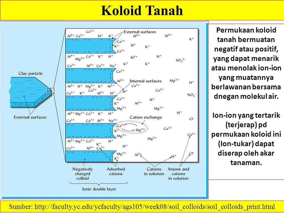 Koloid Tanah Permukaan koloid tanah bermuatan negatif atau positif, yang dapat menarik atau menolak ion-ion yang muatannya berlawanan bersama dnegan m