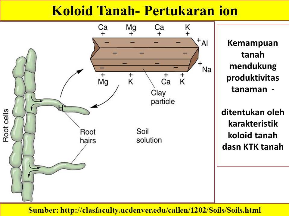 Koloid Tanah- Pertukaran ion Kemampuan tanah mendukung produktivitas tanaman - ditentukan oleh karakteristik koloid tanah dasn KTK tanah Sumber: http: