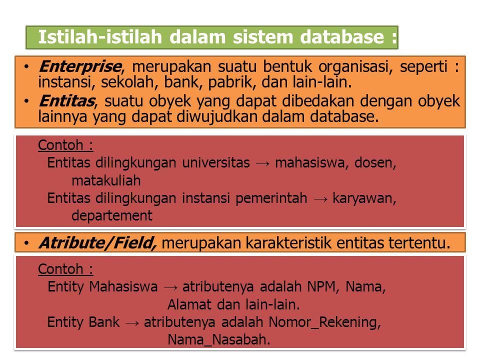 Istilah-istilah dalam sistem database : Enterprise, merupakan suatu bentuk organisasi, seperti : instansi, sekolah, bank, pabrik, dan lain-lain. Entit