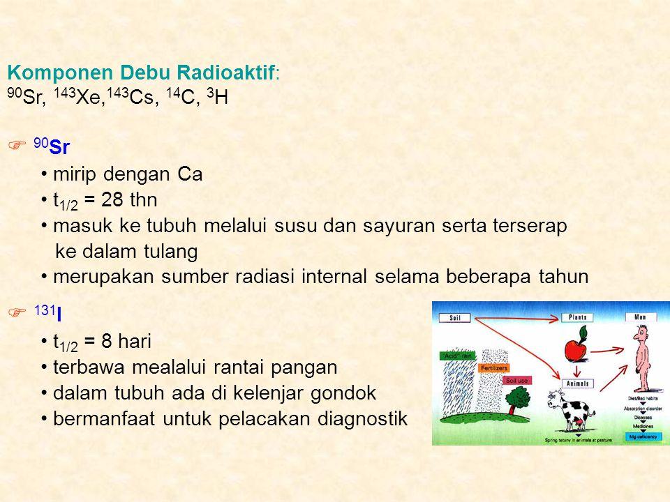 Komponen Debu Radioaktif: 90 Sr, 143 Xe, 143 Cs, 14 C, 3 H  90 Sr mirip dengan Ca t 1/2 = 28 thn masuk ke tubuh melalui susu dan sayuran serta terser
