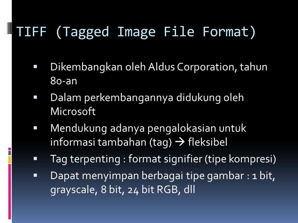TIFF (Tagged Image File Format)  Dikembangkan oleh Aldus Corporation, tahun 80-an  Dalam perkembangannya didukung oleh Microsoft  Mendukung adanya