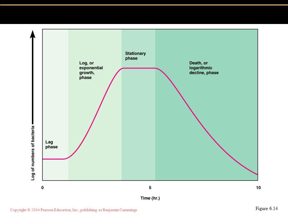 Copyright © 2004 Pearson Education, Inc., publishing as Benjamin Cummings Jumlah koloni: Dilakukan dengan pengenceran sampel Perhitungan mikrobia berdasar jumlah koloni Figure 6.15, top portion