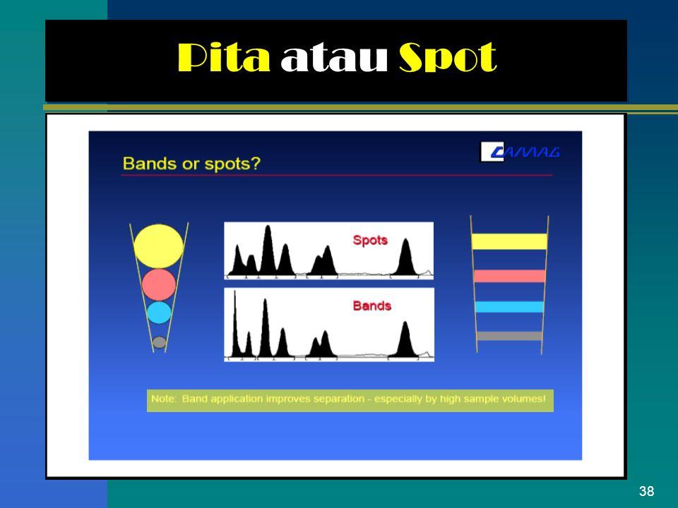 38 Pita atau Spot
