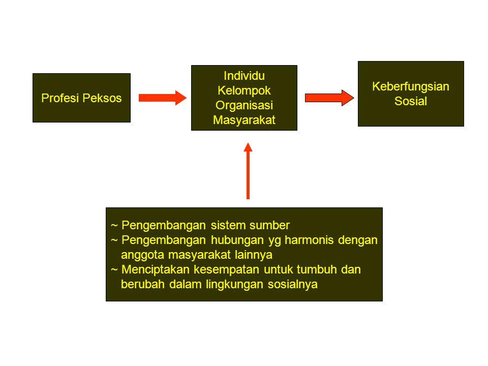 Profesi Peksos Individu Kelompok Organisasi Masyarakat Keberfungsian Sosial ~ Pengembangan sistem sumber ~ Pengembangan hubungan yg harmonis dengan an