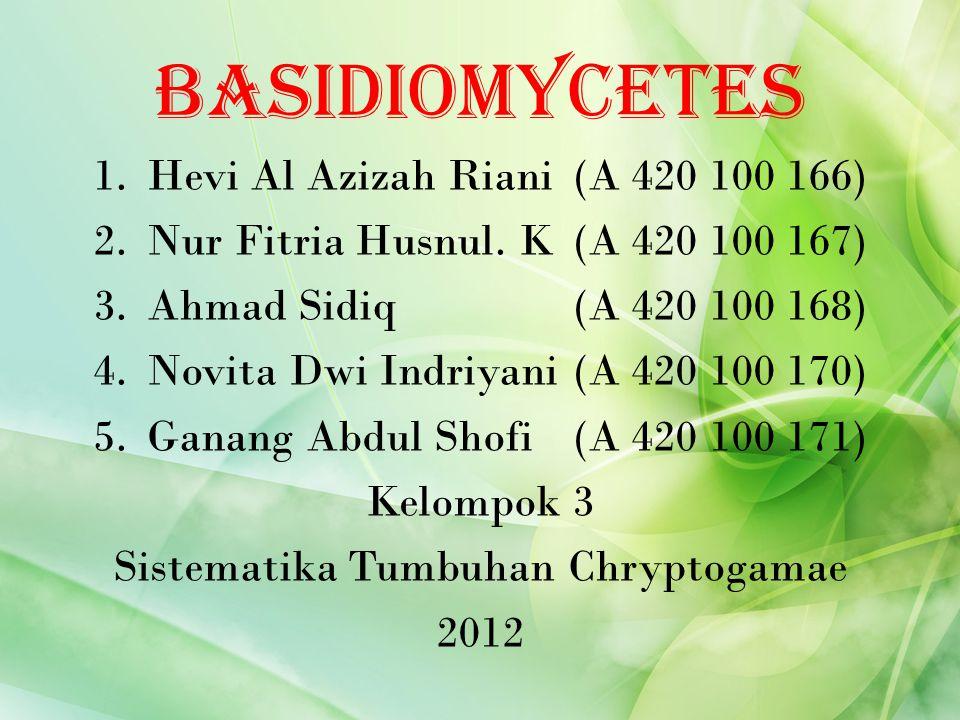 Basidiomycetes 1.Hevi Al Azizah Riani(A 420 100 166) 2.Nur Fitria Husnul. K(A 420 100 167) 3.Ahmad Sidiq(A 420 100 168) 4.Novita Dwi Indriyani(A 420 1