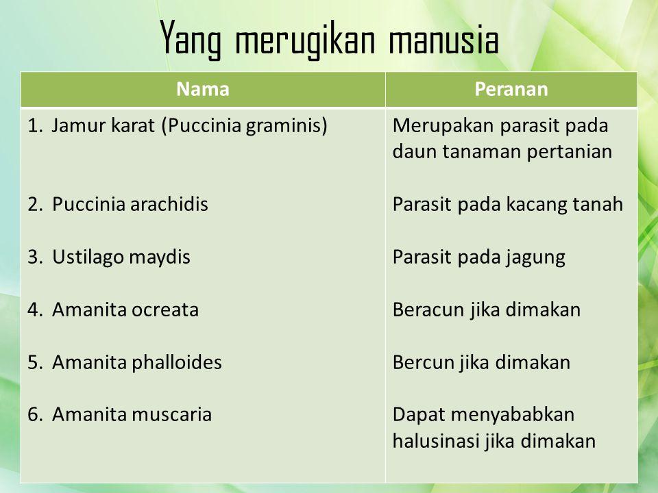 NamaPeranan 1.Jamur karat (Puccinia graminis) 2.Puccinia arachidis 3.Ustilago maydis 4.Amanita ocreata 5.Amanita phalloides 6.Amanita muscaria Merupak