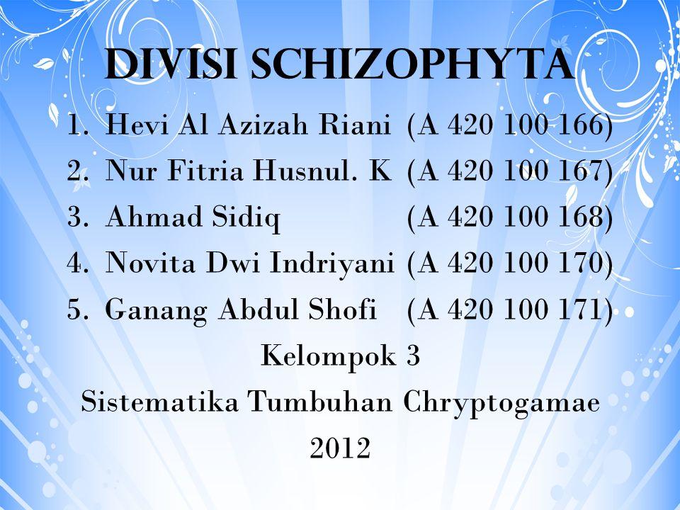 DIVISI SCHIZOPHYTA 1.Hevi Al Azizah Riani(A 420 100 166) 2.Nur Fitria Husnul. K(A 420 100 167) 3.Ahmad Sidiq(A 420 100 168) 4.Novita Dwi Indriyani(A 4