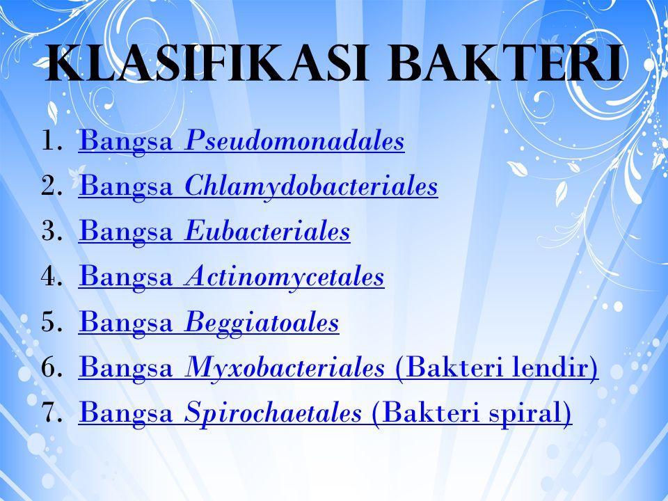 Klasifikasi Bakteri 1.Bangsa PseudomonadalesBangsa Pseudomonadales 2.Bangsa ChlamydobacterialesBangsa Chlamydobacteriales 3.Bangsa EubacterialesBangsa