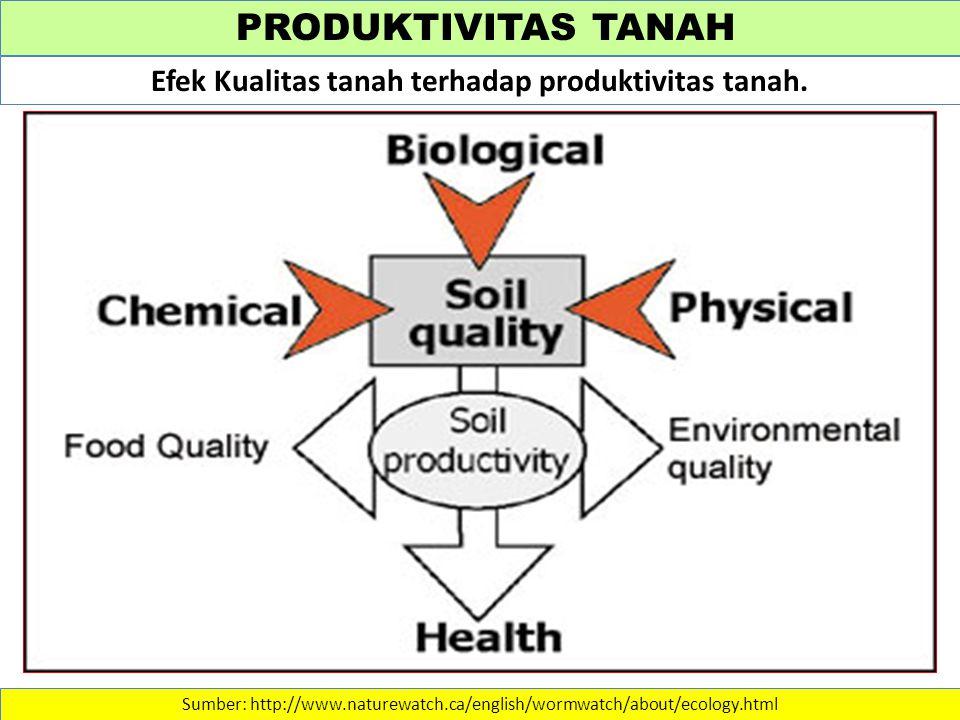 PRODUKTIVITAS TANAH Sumber: http://www.naturewatch.ca/english/wormwatch/about/ecology.html Efek Kualitas tanah terhadap produktivitas tanah.