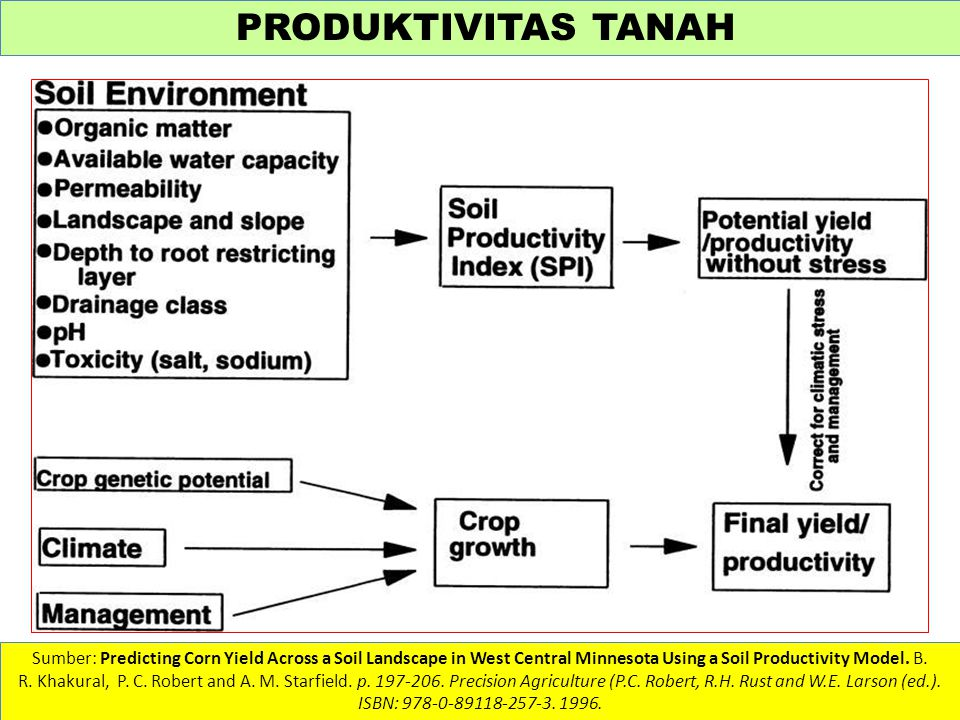 PRODUKTIVITAS TANAH Sumber: Predicting Corn Yield Across a Soil Landscape in West Central Minnesota Using a Soil Productivity Model. B. R. Khakural, P