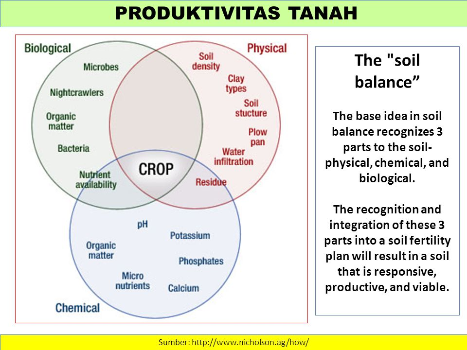 PRODUKTIVITAS TANAH Sumber: http://www.nicholson.ag/how/ The soil balance The base idea in soil balance recognizes 3 parts to the soil- physical, chemical, and biological.
