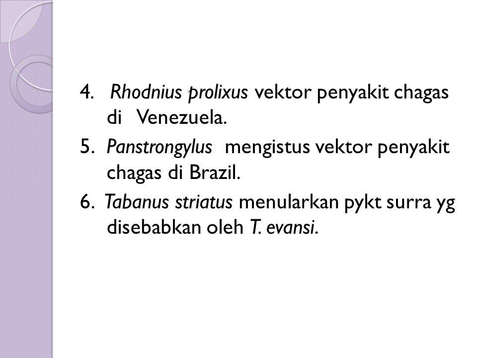 4. Rhodnius prolixus vektor penyakit chagas di Venezuela. 5. Panstrongylus mengistus vektor penyakit chagas di Brazil. 6. Tabanus striatus menularkan