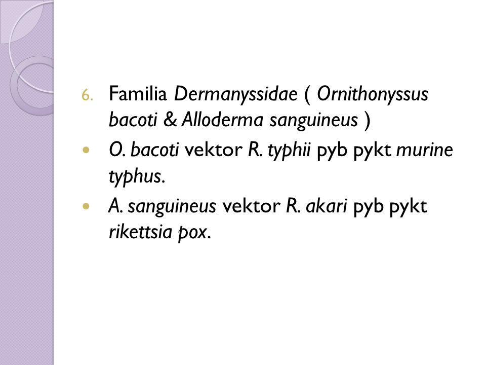 6. Familia Dermanyssidae ( Ornithonyssus bacoti & Alloderma sanguineus ) O.