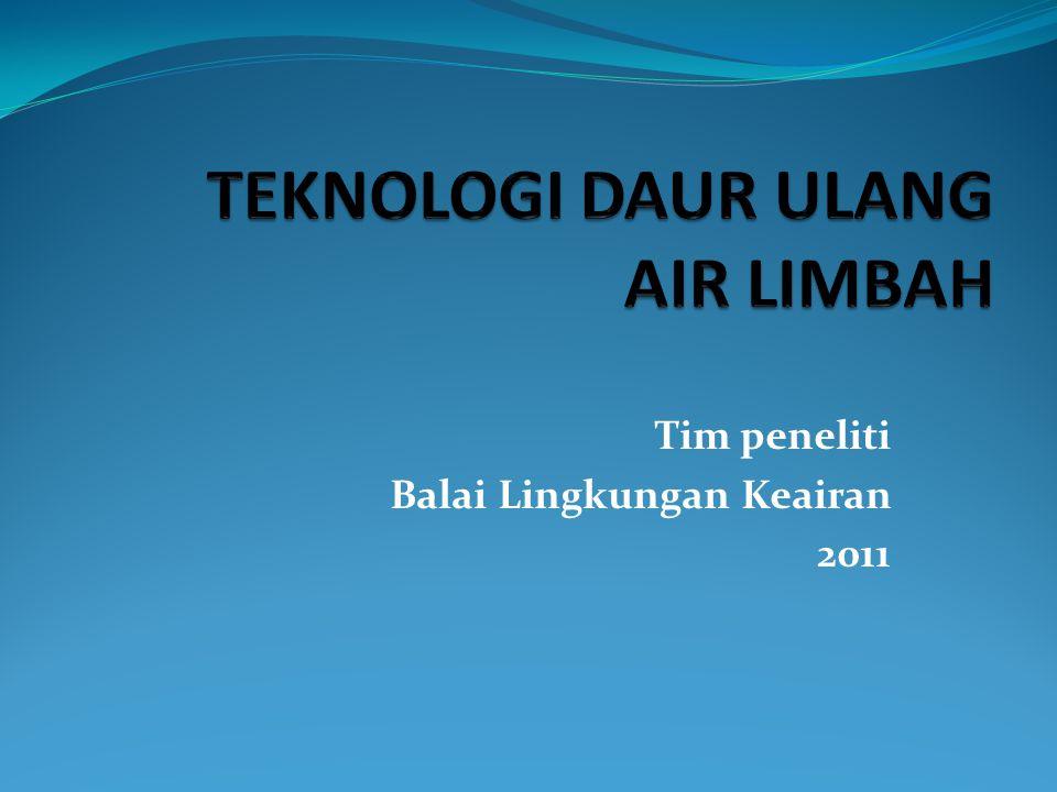 Tim peneliti Balai Lingkungan Keairan 2011