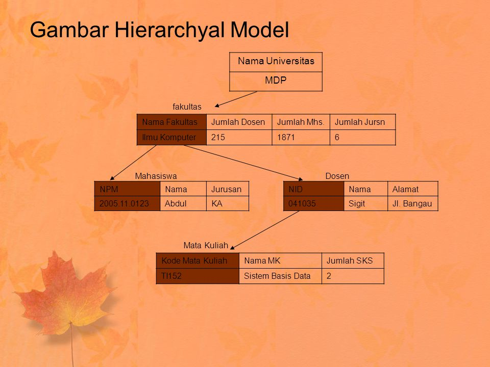 Gambar Hierarchyal Model NPMNamaJurusan 2005.11.0123AbdulKA NIDNamaAlamat 041035SigitJl. Bangau Nama Universitas MDP Nama FakultasJumlah DosenJumlah M