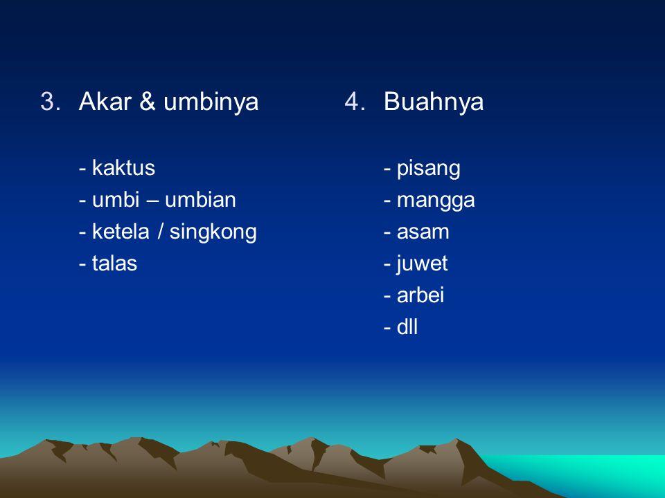 3.Akar & umbinya - kaktus - umbi – umbian - ketela / singkong - talas 4. 4.Buahnya - pisang - mangga - asam - juwet - arbei - dll