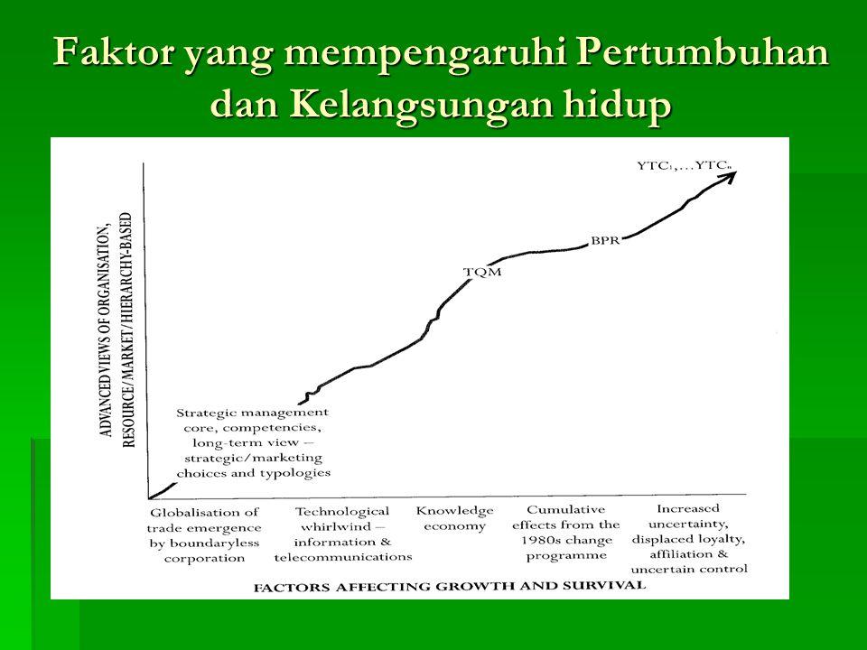 Lingkungan 1.Kontex Sosial, Budaya dan Politik 2.Kontex Ekonomi 3.Kontex Industri 4.Kontex Perkembangan Teknologi 5.Kontex Strategi Perusahaan 6.Kontex Penerapan Organisasi