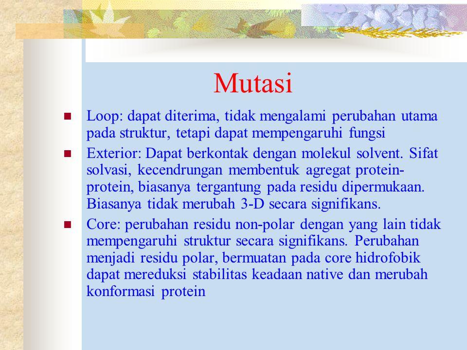 Mutasi Loop: dapat diterima, tidak mengalami perubahan utama pada struktur, tetapi dapat mempengaruhi fungsi Exterior: Dapat berkontak dengan molekul