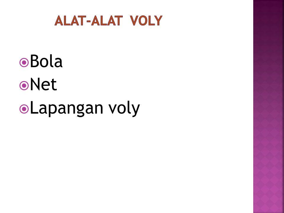 Voly adalah suatu permainan bola yang menggunakan net, yang dilakukan oleh dua team yang setiap team berjumlah enam orang. Permainan ini dilakukan men