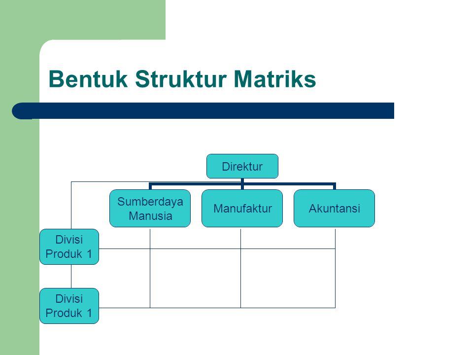 Bentuk Struktur Matriks Direktur Sumberdaya Manusia ManufakturAkuntansi Divisi Produk 1 Divisi Produk 1