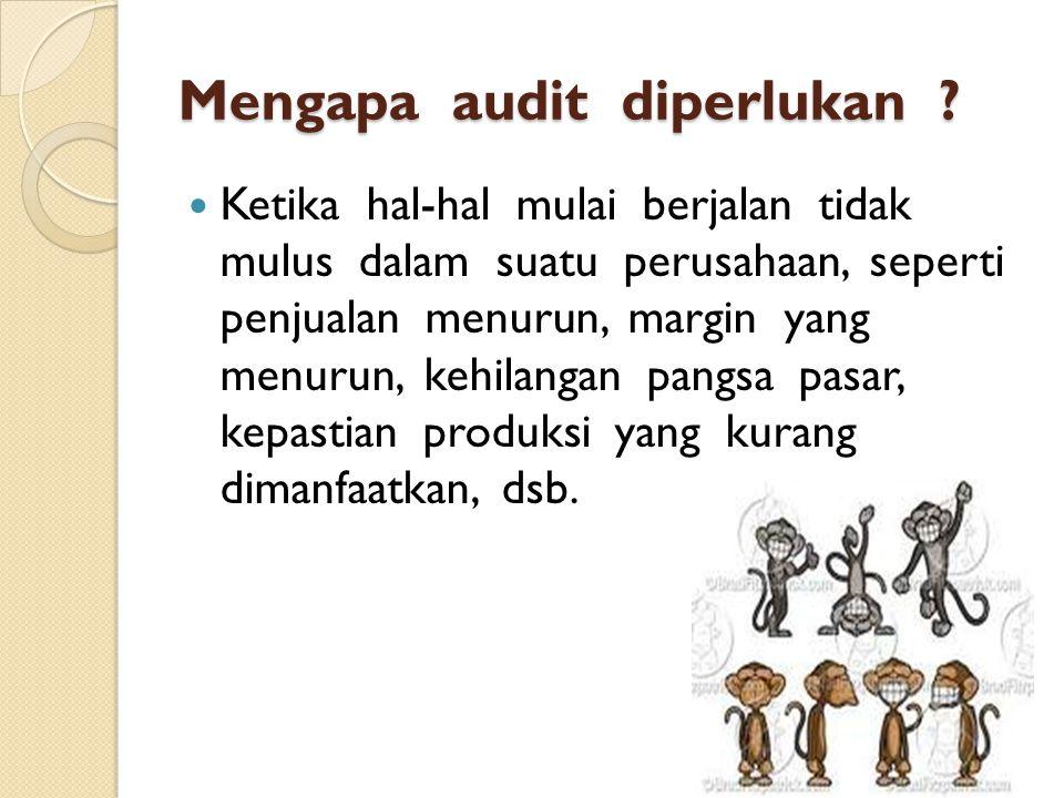 Mengapa audit diperlukan .