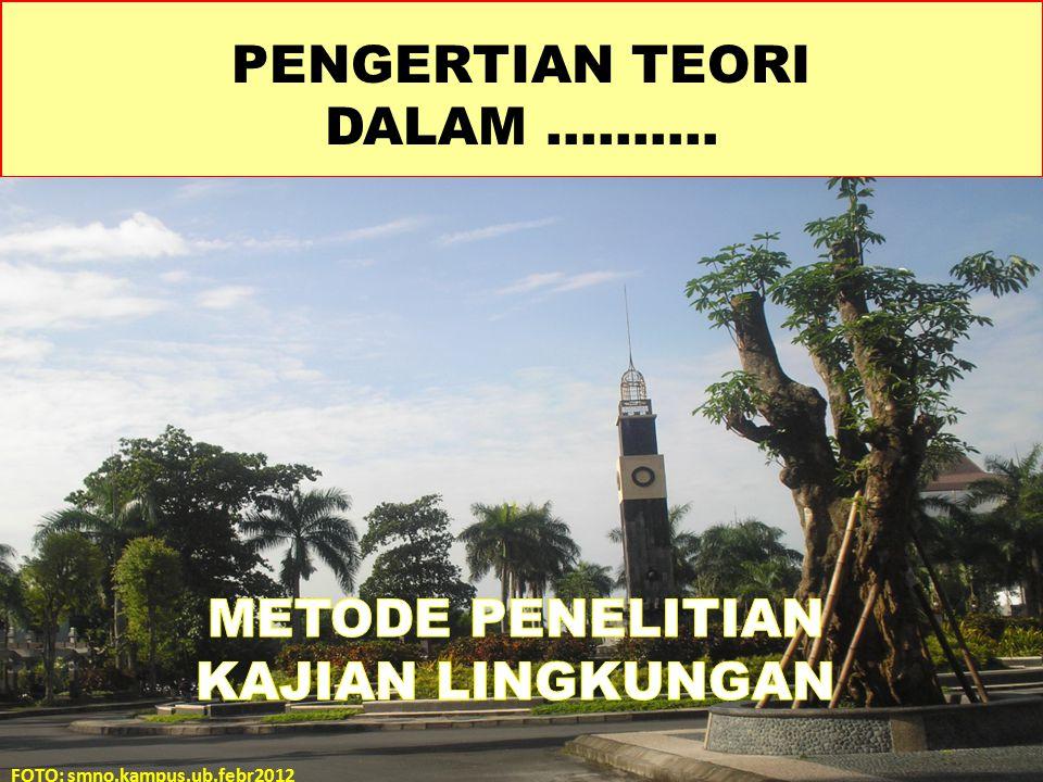 Pengertian atau istilah teori dalam Dictionary Americana dalam bahasa indonesia, bahwa teori adalah : 1.Suatu yang sistematis tentang fakta-fakta yang berkaitan dengan dalil-dalil nyata atau dalil-dalil hipotesis.