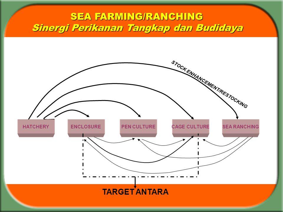 SEA FARMING/RANCHING Sinergi Perikanan Tangkap dan Budidaya ENCLOSUREPEN CULTURECAGE CULTURESEA RANCHING TARGET ANTARA STOCK ENHANCEMENT/RESTOCKING HA