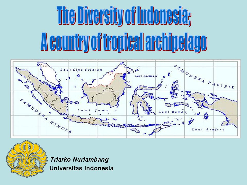 Universitas Indonesia Triarko Nurlambang