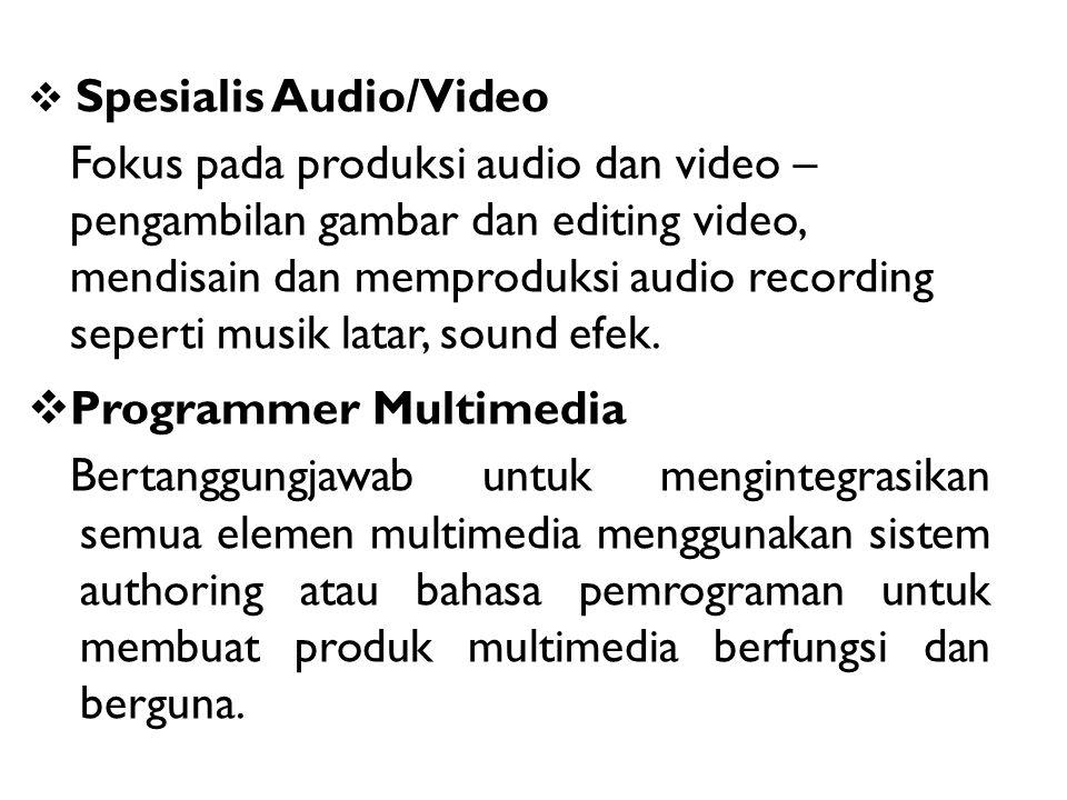 Spesialis Audio/Video Fokus pada produksi audio dan video – pengambilan gambar dan editing video, mendisain dan memproduksi audio recording seperti