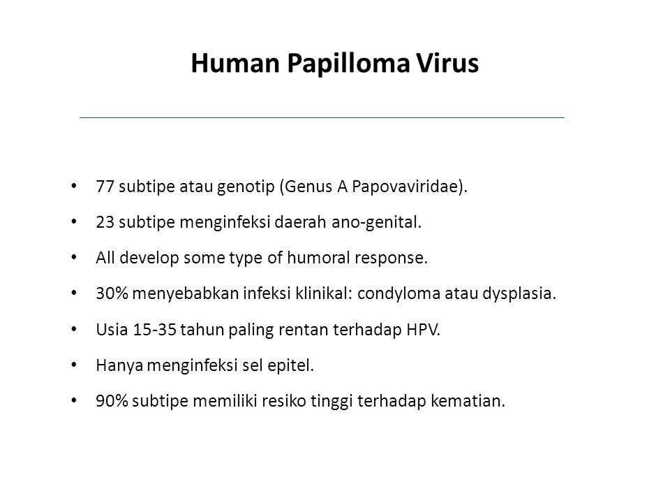 Human Papilloma Virus 77 subtipe atau genotip (Genus A Papovaviridae).