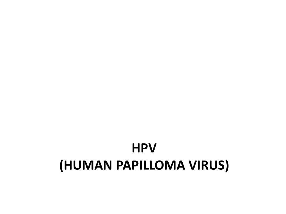 -Small dsDNA virus -Memiliki 100 tipe berdasarkan sekuens DNA -Kapsid terdiri dari 72 kapsomer -Komponen kapsomer: hexons dan pentons -Periode inkubasi: 3 bulan setelah terekspos (kutil), tahunan (kanker) -Menghibisi p56 dan pRb (protein regulator Apoptosis) → mengiduksi sel malignant