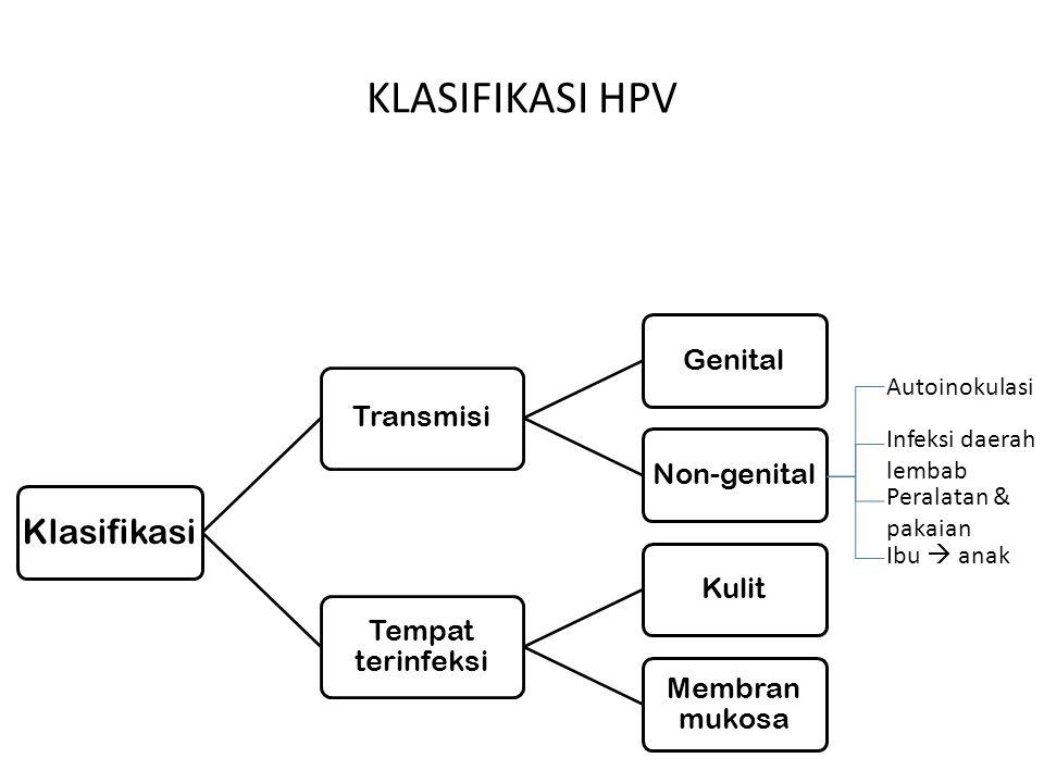 HPV16 / 18 HPV 45/31/52 Lainnya