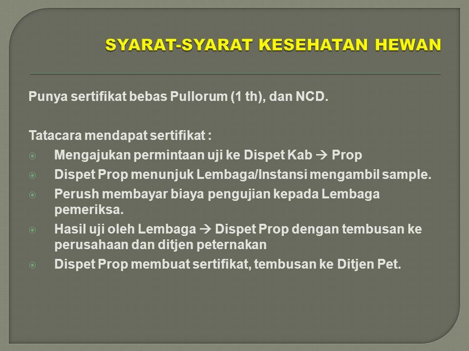 Punya sertifikat bebas Pullorum (1 th), dan NCD. Tatacara mendapat sertifikat :  Mengajukan permintaan uji ke Dispet Kab  Prop  Dispet Prop menunju