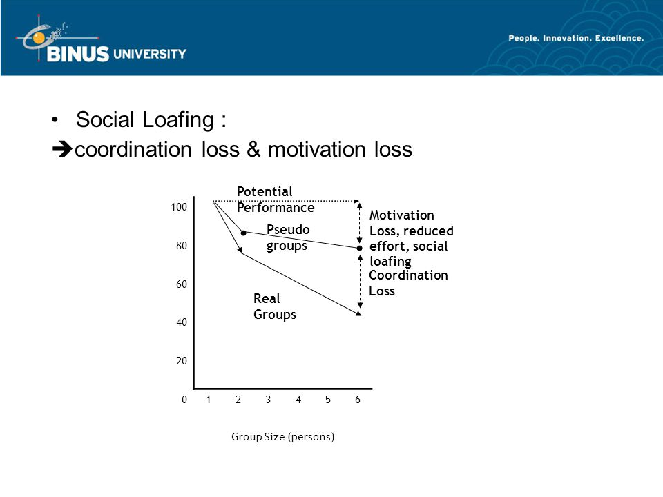 Social Loafing :  coordination loss & motivation loss 100 80 60 40 20 0123456 Group Size (persons) Coordination Loss Motivation Loss, reduced effort,