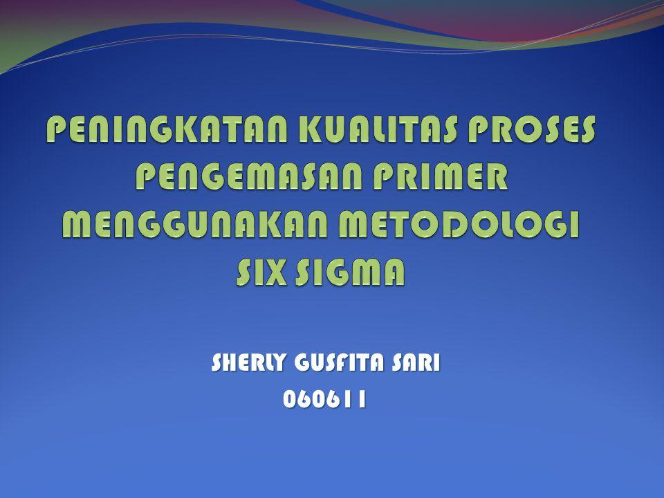 SHERLY GUSFITA SARI 060611