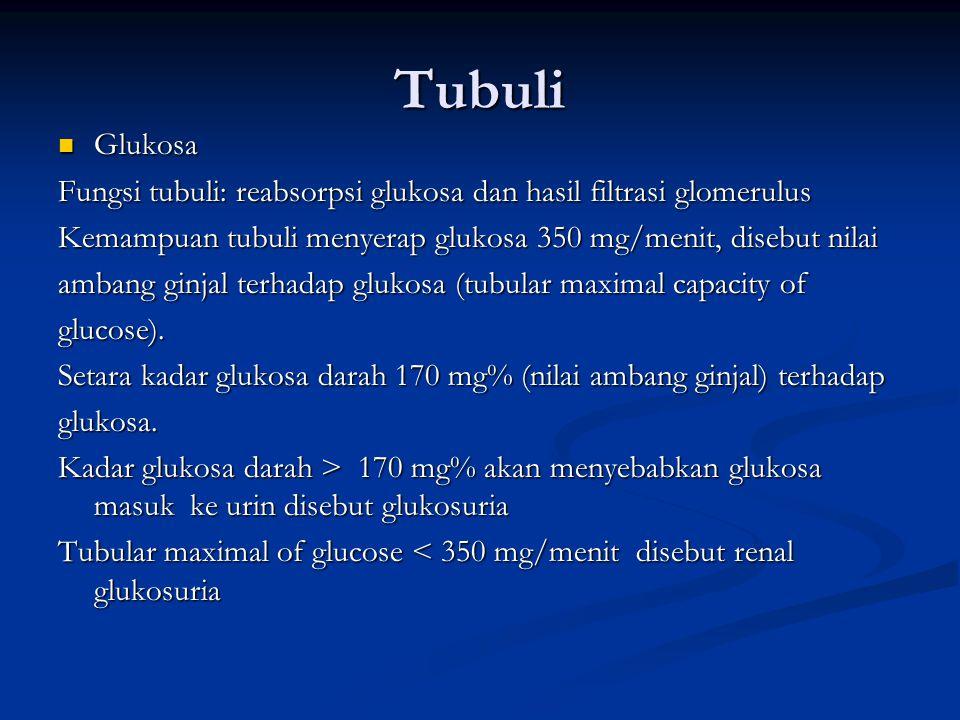 Tubuli Glukosa Glukosa Fungsi tubuli: reabsorpsi glukosa dan hasil filtrasi glomerulus Kemampuan tubuli menyerap glukosa 350 mg/menit, disebut nilai a