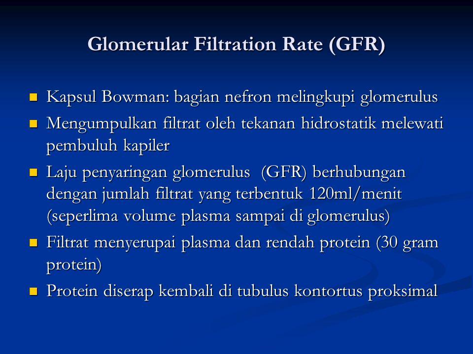 Glomerular Filtration Rate (GFR) Kapsul Bowman: bagian nefron melingkupi glomerulus Kapsul Bowman: bagian nefron melingkupi glomerulus Mengumpulkan fi
