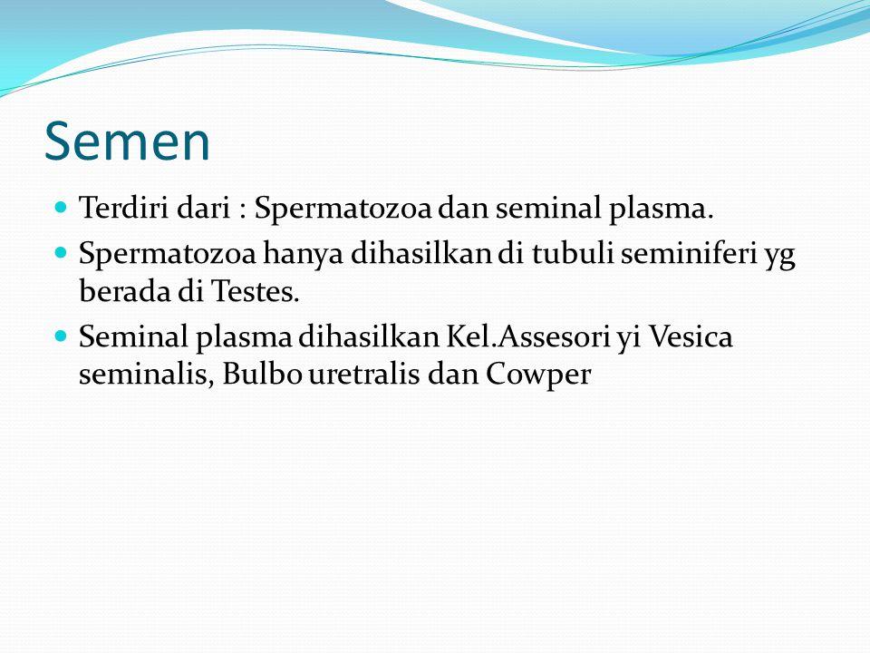 Semen Terdiri dari : Spermatozoa dan seminal plasma.