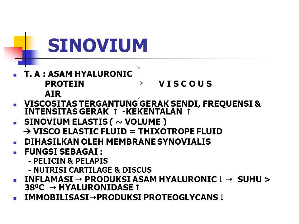 SINOVIUM T. A : ASAM HYALURONIC PROTEIN V I S C O U S AIR VISCOSITAS TERGANTUNG GERAK SENDI, FREQUENSI & INTENSITAS GERAK  -KEKENTALAN  SINOVIUM ELA