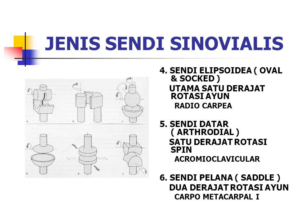 4. SENDI ELIPSOIDEA ( OVAL & SOCKED ) UTAMA SATU DERAJAT ROTASI AYUN RADIO CARPEA 5. SENDI DATAR ( ARTHRODIAL ) SATU DERAJAT ROTASI SPIN ACROMIOCLAVIC