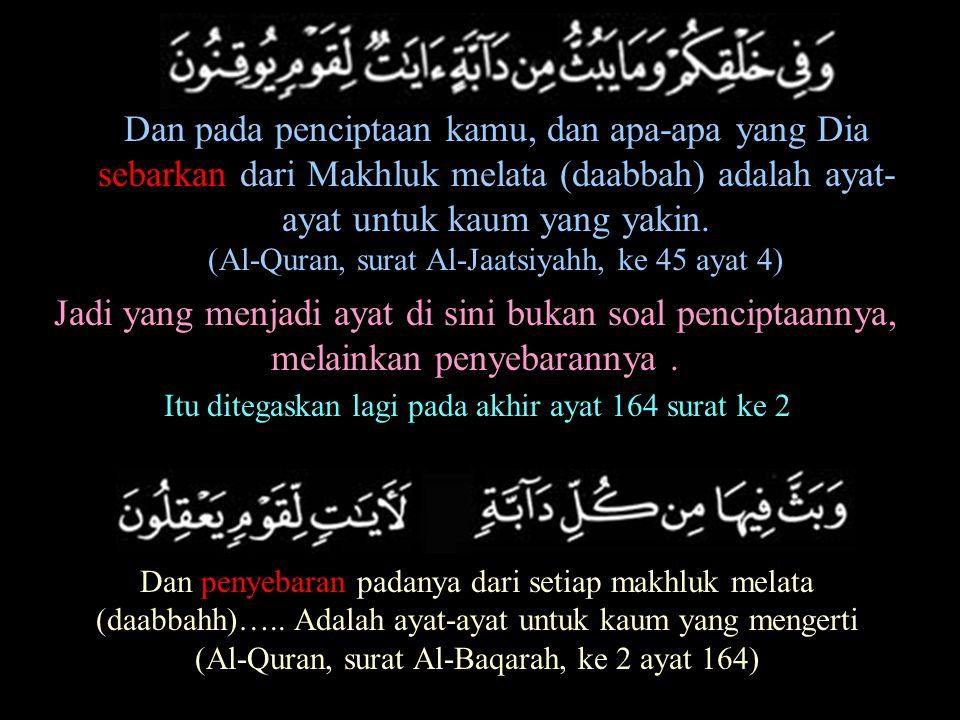 Dan pada penciptaan kamu, dan apa-apa yang Dia sebarkan dari Makhluk melata (daabbah) adalah ayat- ayat untuk kaum yang yakin. (Al-Quran, surat Al-Jaa