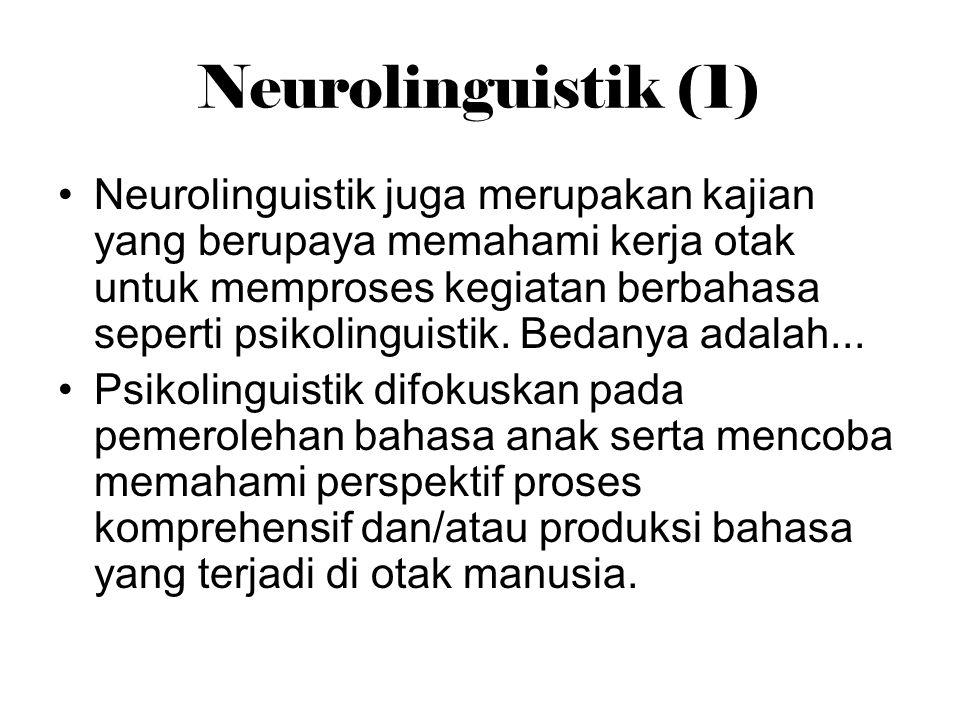 Neurolinguistik (1) Neurolinguistik juga merupakan kajian yang berupaya memahami kerja otak untuk memproses kegiatan berbahasa seperti psikolinguistik