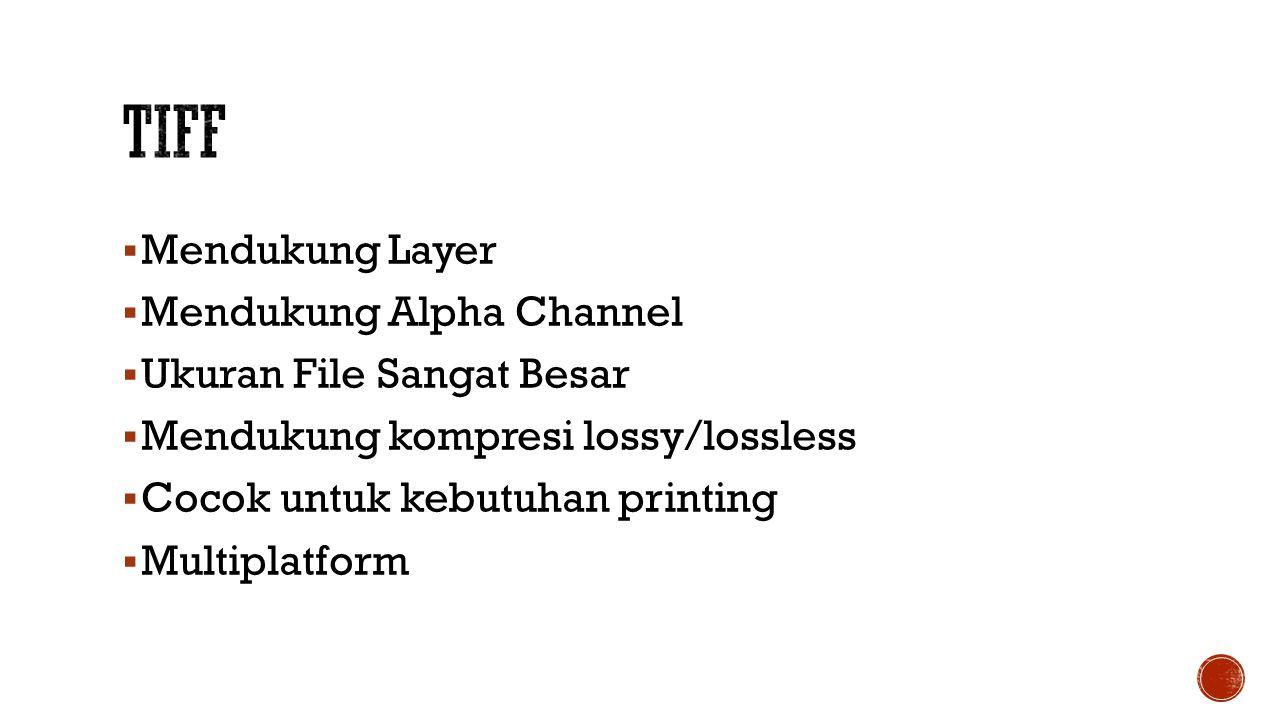  Mendukung Layer  Mendukung Alpha Channel  Ukuran File Sangat Besar  Mendukung kompresi lossy/lossless  Cocok untuk kebutuhan printing  Multiplatform