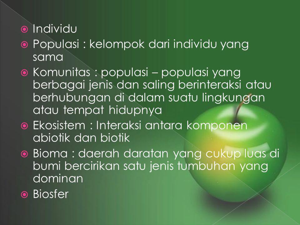  Individu  Populasi : kelompok dari individu yang sama  Komunitas : populasi – populasi yang berbagai jenis dan saling berinteraksi atau berhubunga