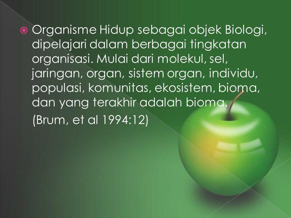  Organisme Hidup sebagai objek Biologi, dipelajari dalam berbagai tingkatan organisasi. Mulai dari molekul, sel, jaringan, organ, sistem organ, indiv