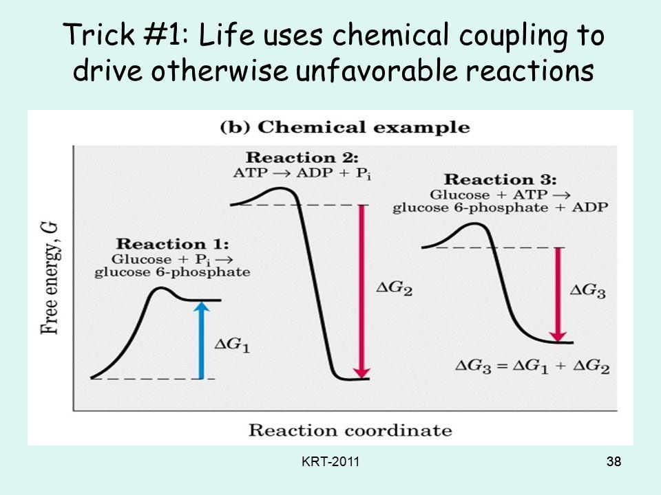 KRT-201137 Life needs (3) CHEMICAL MECHANISMS, to: Memanfaatkan energy Mengendalikan serangkaian reaksi kimia Mensisntesis & mendegradasi macromolecules Mempertahankan suatu keadaan yang terus- menerus dinamis Self-assemble complex structures Replicate secara akurat dan efisien Mempertahankan biochemical order vs outside