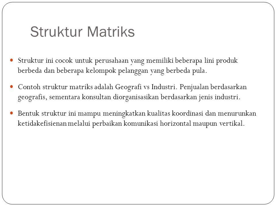 Struktur Matriks Struktur ini cocok untuk perusahaan yang memiliki beberapa lini produk berbeda dan beberapa kelompok pelanggan yang berbeda pula.